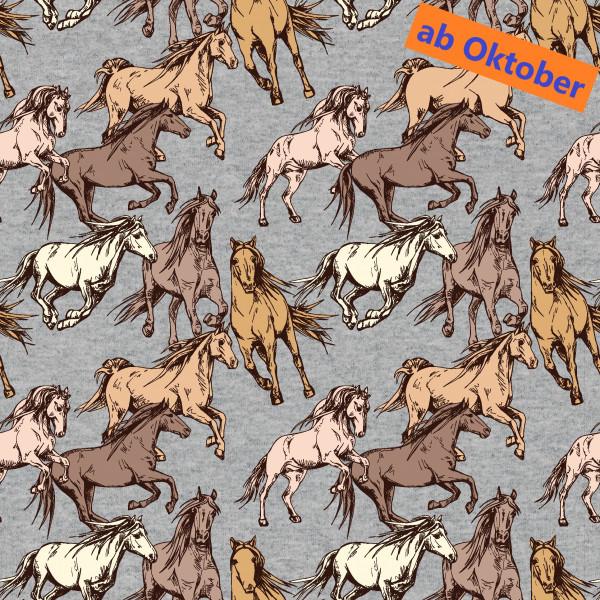 Xaver (Pferd, French Terry) - B1679