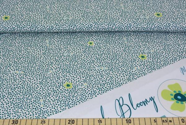"""Dotty (Blume) """"Blaubeerstern"""" - H208"""
