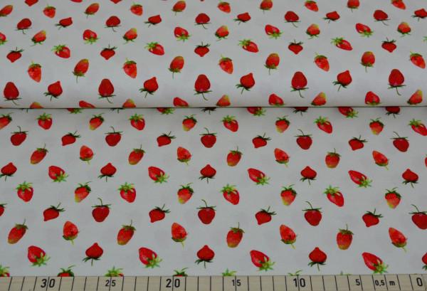 Erdbeeren (creme) - B756