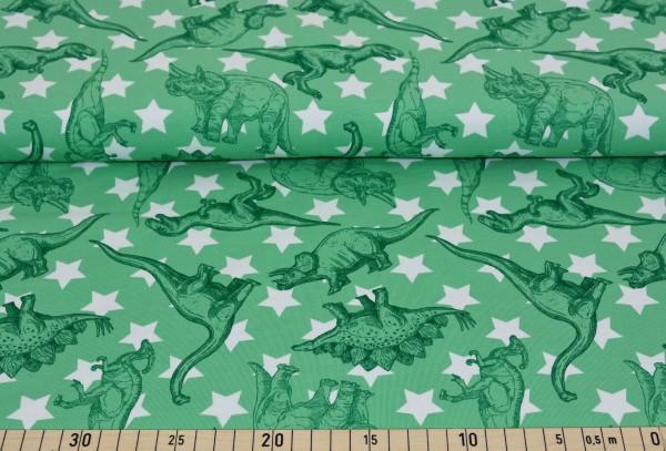 Dinosaurier + Sterne (grün) - B1243