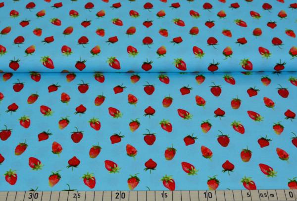 Erdbeeren (mint) - B758