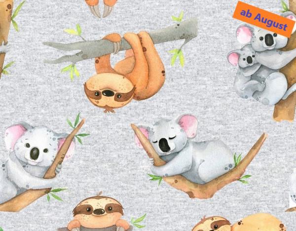 Fred (Faultier, Koala, grau meliert) - B1629 (angeraut)