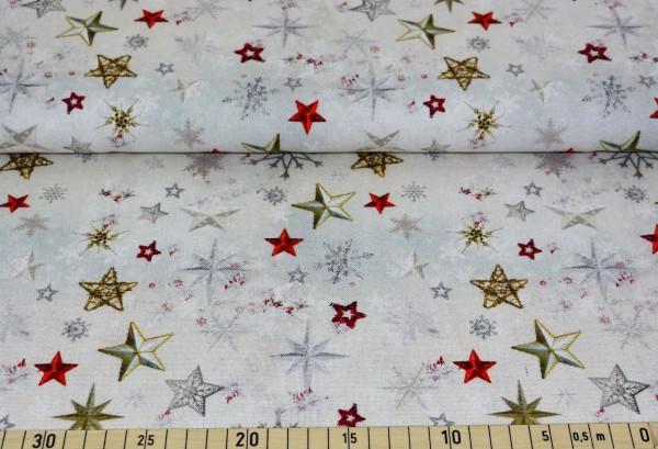 Weihnachtssterne (grau) - E141 (Deko)