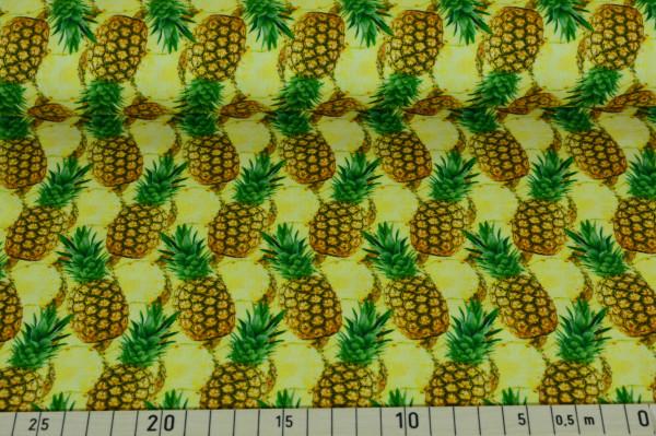 Ananas - B760