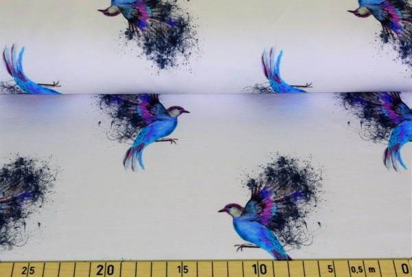 blue bird - B1055