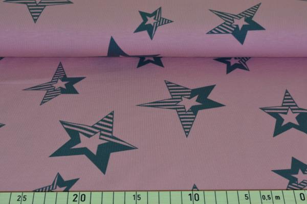 """Stars """"rosa"""" - B968"""