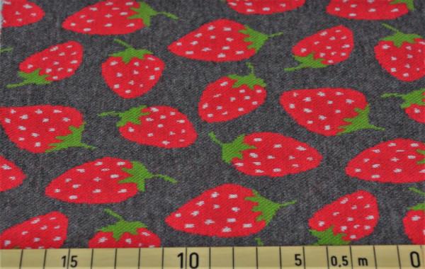 Benjamin (Erdbeere) - Z489