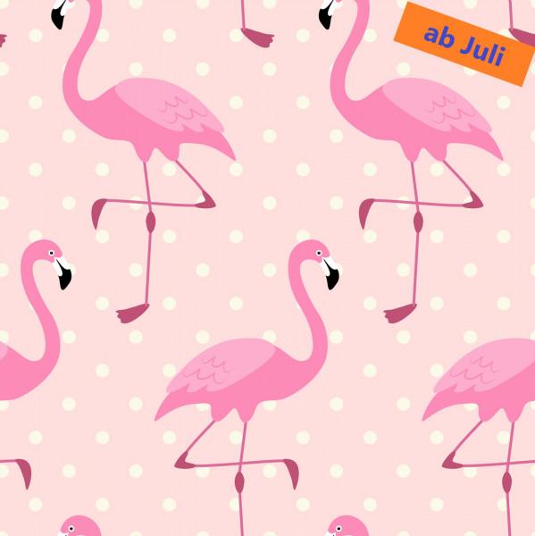 Flamingo Rosarot (Punkte/rosa) - B1613