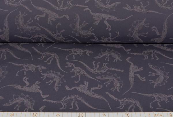 Dinozeit (grau) - Z534 (Softshell)