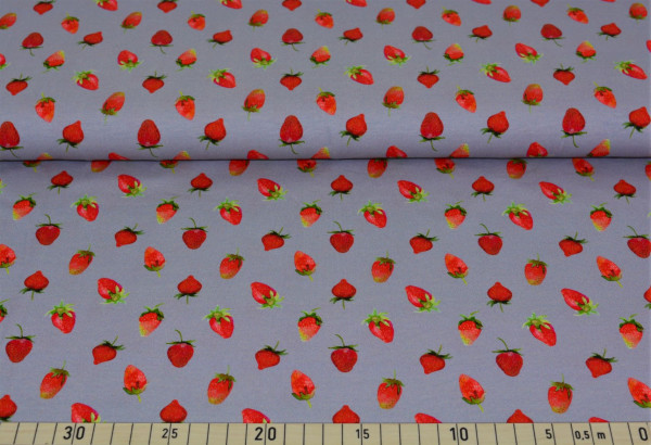 Erdbeeren (grau) - B757