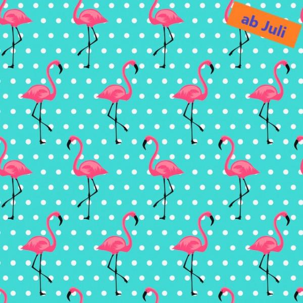 Flamingo Rosarot (Punkte/türkis) - B1609
