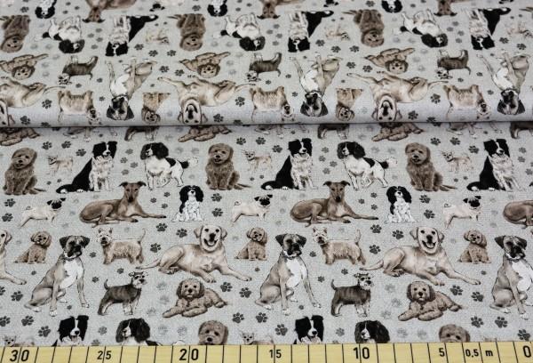 dogs (beige) - D252