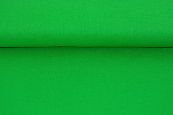 Baumwolle uni (grün) - 3550