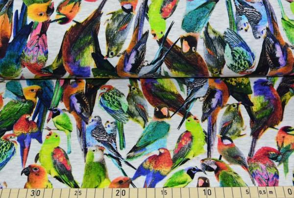 Tropenvögel (ecru) - L134