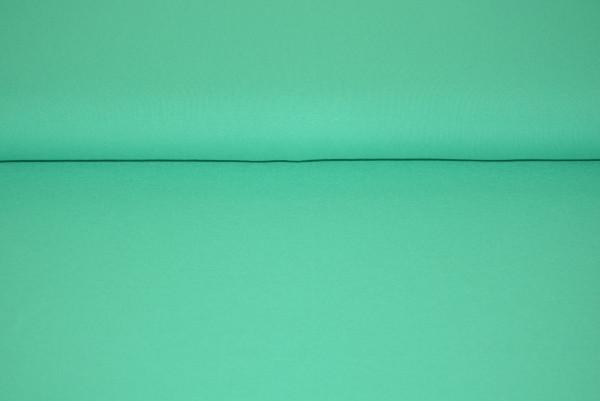 Viscose Jersey uni (mint) - 3611