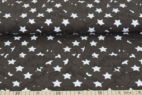 Dinosaurier + Sterne (braun) - B1242