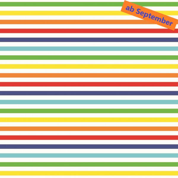 rainbow (Streifen, Regenbogen, Baumwolle) - B1633