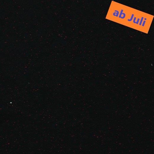 Rolf (schwarz,meliert) - Z631