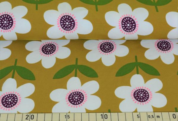 Floris (senf) - I349 (Softshell)
