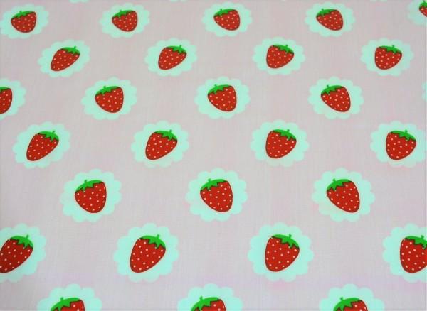 strawberry (rosa) - X031