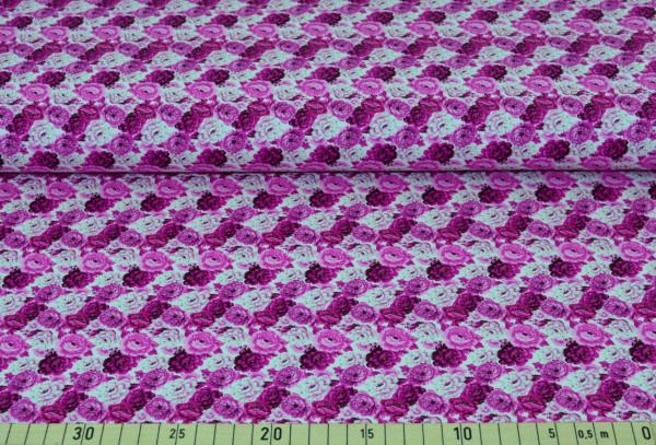 Pfingstrosen (pink) - B1459