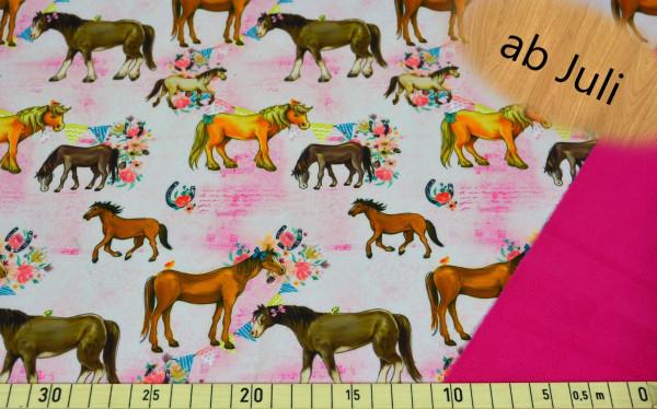 Pferde - A469